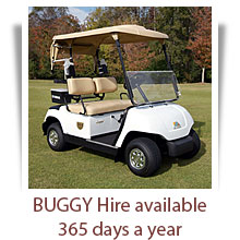 welc_pict-buggy_mo